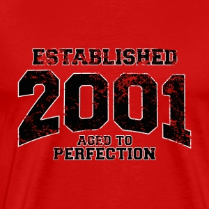 established 2001(sv) T-shirts - Premium-T-shirt herr