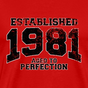 Geburtstag - established 1981 - aged to perfection - Männer Premium T-Shirt