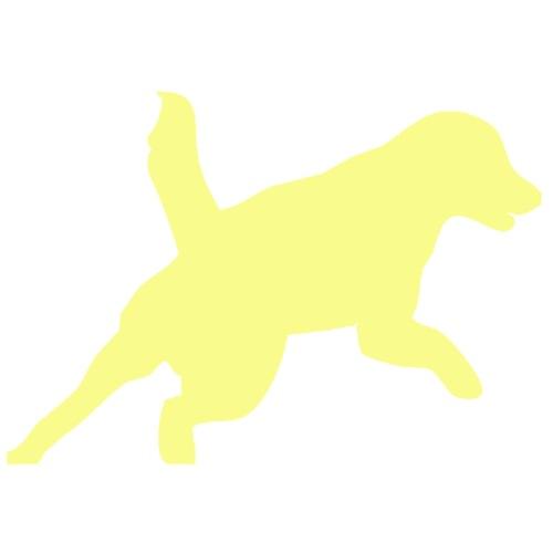 Apportering till vardag och fest gul hund