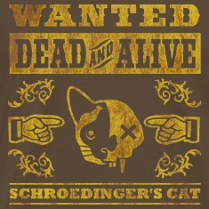 Schroedinger's cat, distressed T-Shirts