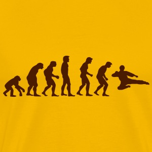 Kung fu Evolution T-shirts - Herre premium T-shirt