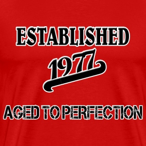 Established 1977 T-shirts - Mannen Premium T-shirt