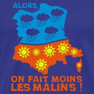 Motif ~ VRAI il fait toujours beau en Bretagne...H