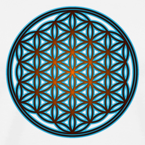 Flower of life, Sacred geometry, Yoga, meditation