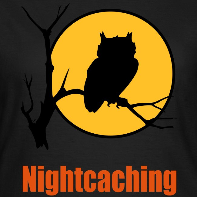 Nightcaching Owl 3