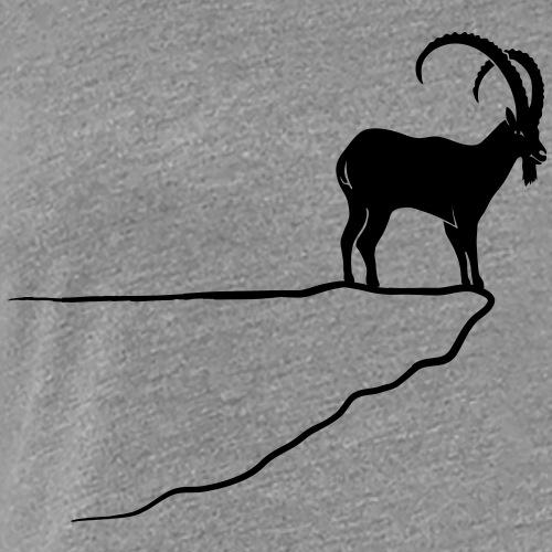 ibex capricorn alpine the alps bavaria mountains