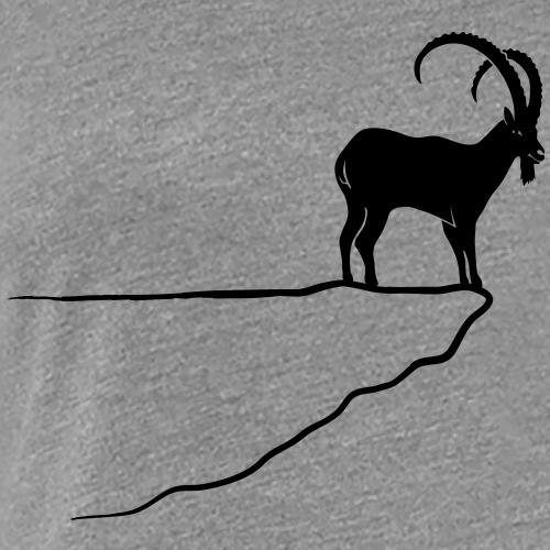ibex capricorn alpine the alps bavaria mountains