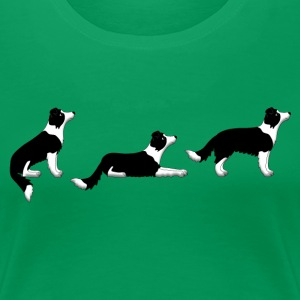 sit down up border collie T-shirts - Vrouwen Premium T-shirt