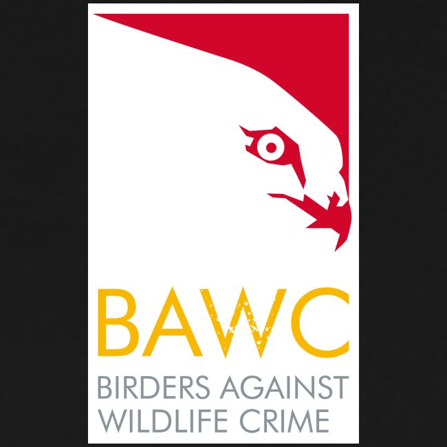 Men's BAWC Logo T-Shirt