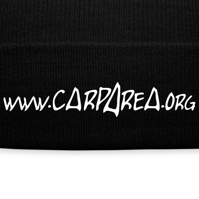 www.carparea.org Wintermütze