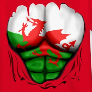 Wales Flag Ripped Muscles, six pack, chest t-shirt - Teenage T-shirt