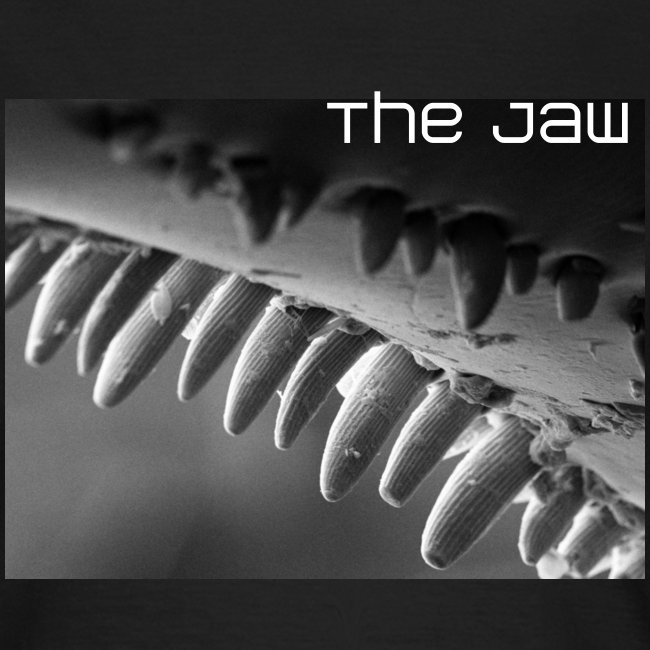The Jaw