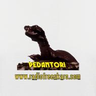 Design ~ Pedantor! (Baseball Shirt)