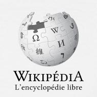 Motif ~ Wikipédia poitrine Blanc/Cendre