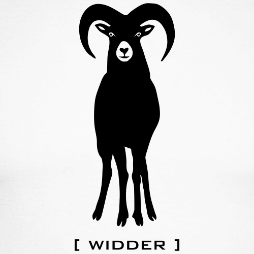 Schaf Wildschaf Muffel Muffelwild Wild Widder