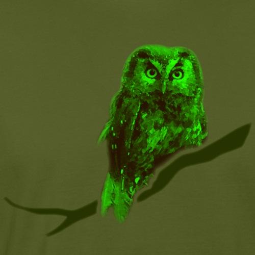 Eule kauz Uhu grün