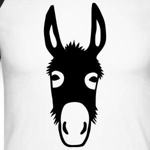 esel maultier donkey pferd
