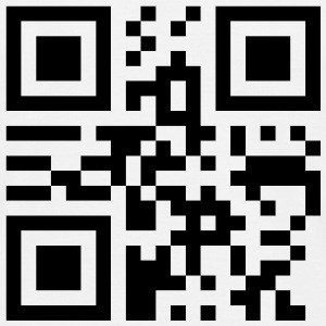 king_qrcode_1c T-shirts - Mannen T-shirt