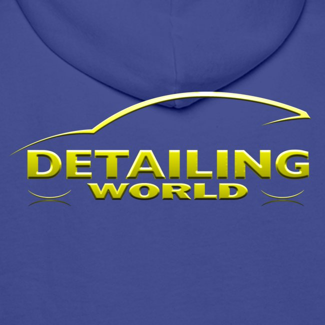 Detailing World 'Gold Logo' Hooded Fleece Top
