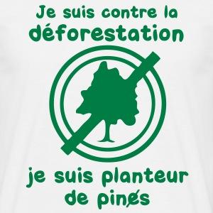 planteur_de_pines