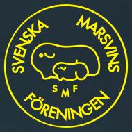 Motiv ~ Sverige Tröjja. SMF på bröstet och Team Sweden på ryggen!