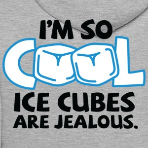 Im So Cool 2 (dd)++ Sweat-shirts - Sweat-shirt à capuche Premium pour hommes