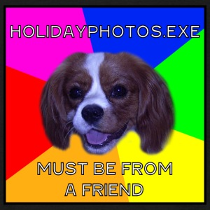 Bad Advice Dog Holidayphotos.exe - must be from a friend - Männer T-Shirt