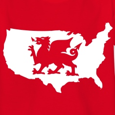 USA Welsh Dragon Kids' Shirts
