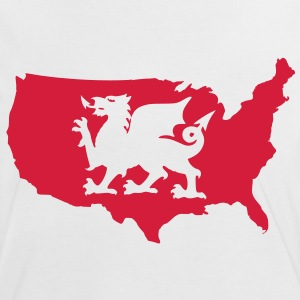 USA Welsh Dragon T-Shirts - Women's Ringer T-Shirt