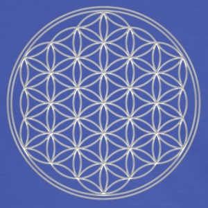 FEEL THE ENERGY, Flower of Life, Silver, Sacred Geometry, Protection Symbol, Harmony, Balance, Camisetas - Camiseta contraste hombre
