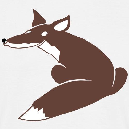 fuchs hund wolf fuchsig katze fox foxy schlau tier schakal kojote