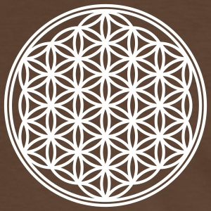 Vector - Flower of Life - 01, 1c, sacred geometry, energy, symbol, powerful, healing, protection, cl T-Shirts - Men's Ringer Shirt
