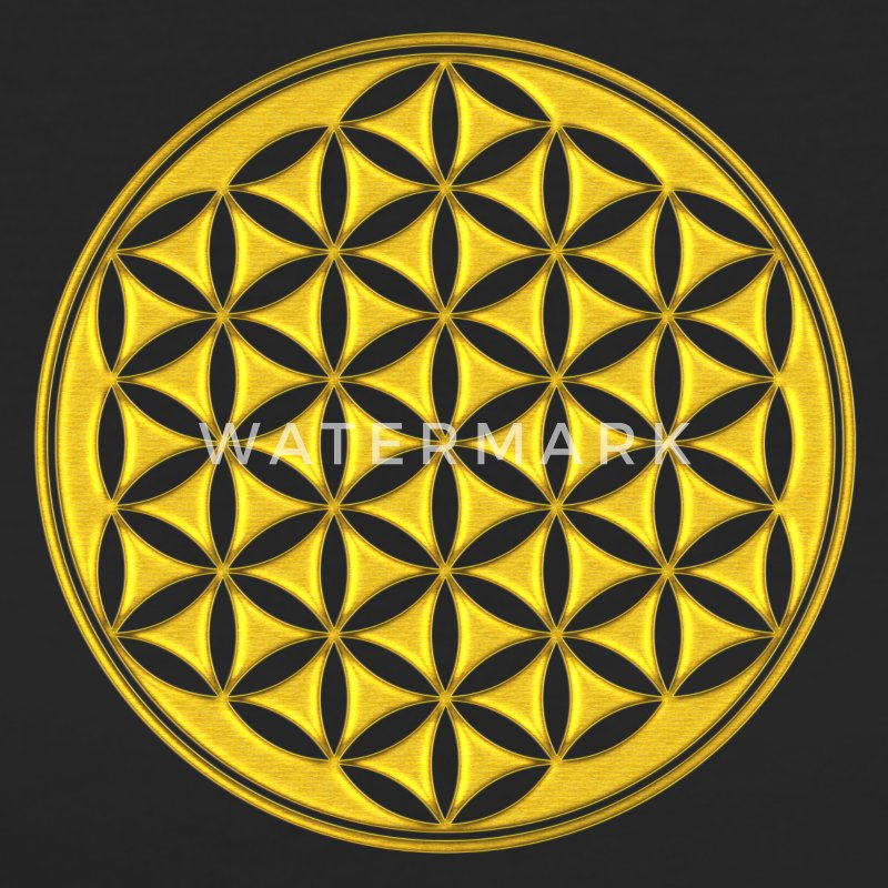 Fleur de Vie - Flower of life - gold - sacred geometry - power of balancing and energizing, energy symbol Tee shirts - T-shirt Bio Femme
