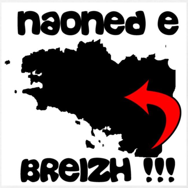 Naoned e Breizh !