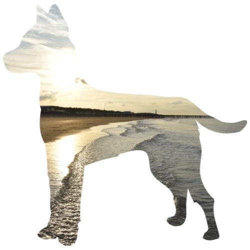 Hund-Nordsee