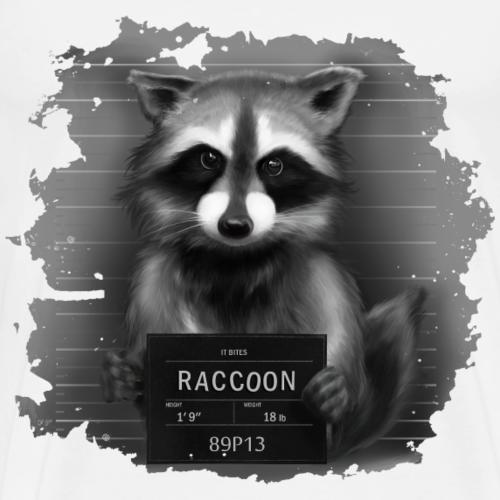 Raccoon Mugshot