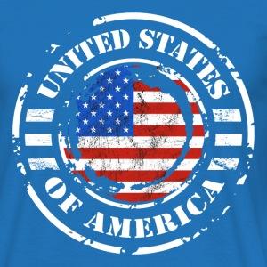 USA Grunge Flag 4.png