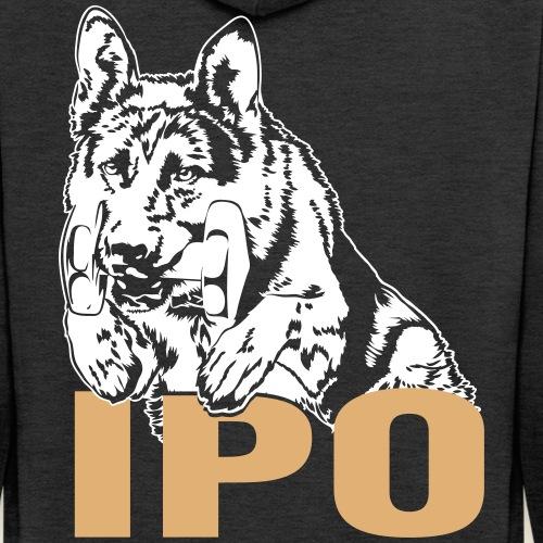 DSH _IPO