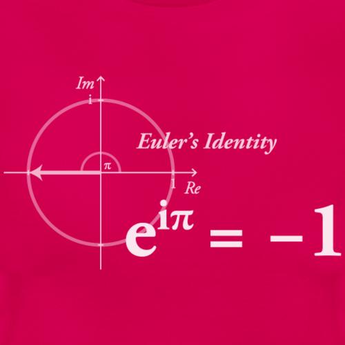 Euler Formel Mathe 2.0