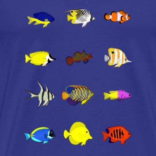 12 Rifffische