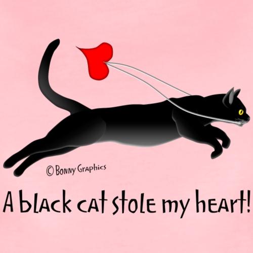 Black cat thief