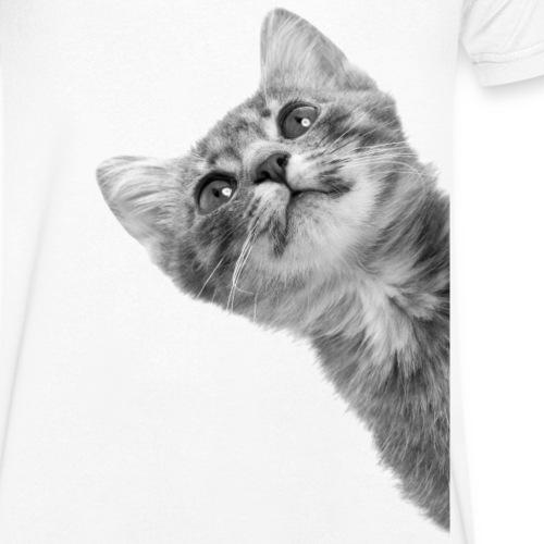 sneaky cat