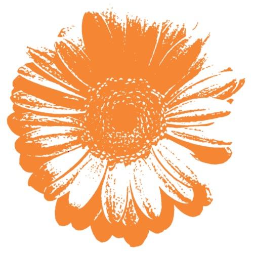 Gerbera_Orange