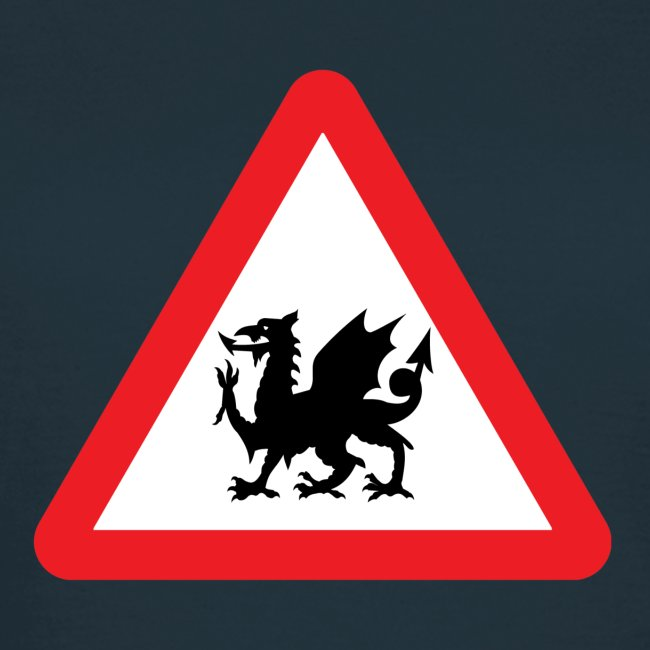 Beware Dragons!