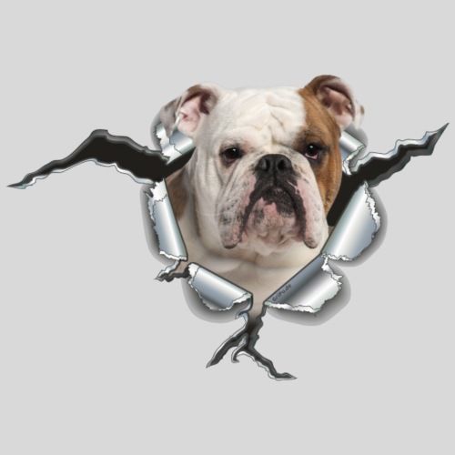 Englische Bulldogge *Metall-Loch*