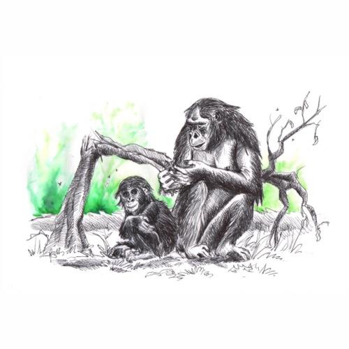 bonobos famille