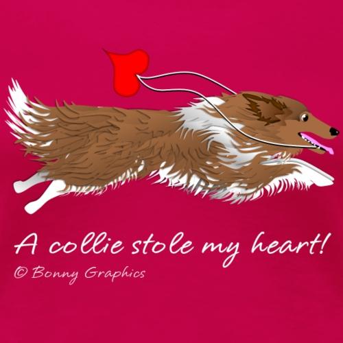 Rough collie thief sable