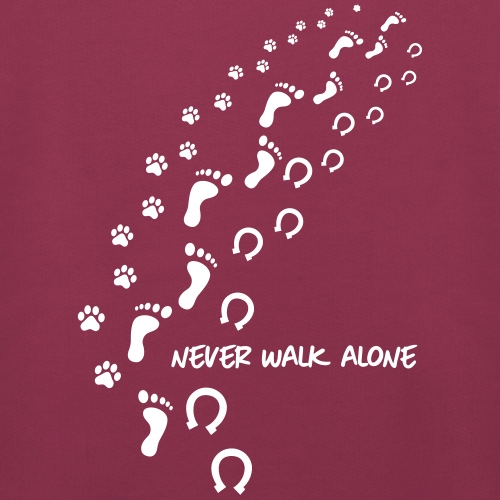 never walk alone hund pferd
