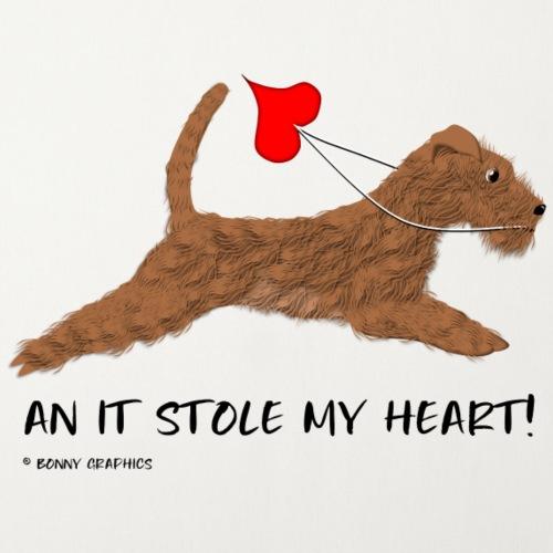 Irish terrier thief