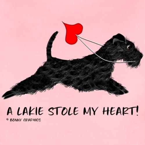 Lakeland terrier black